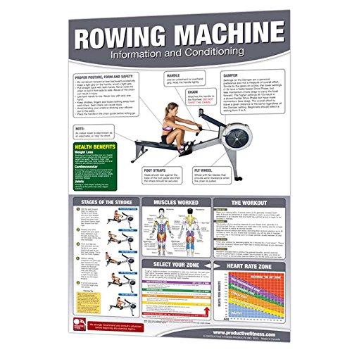 Machine Strength Training Productive Fitness