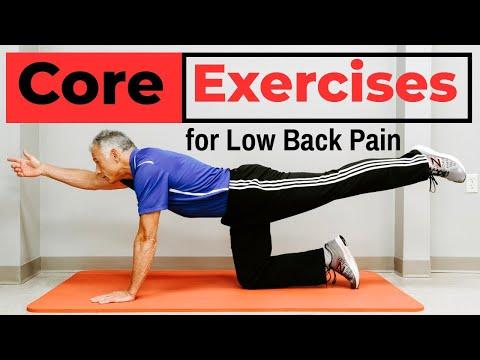 7 Simple Core Exercises That PREVENT Low Back Pain