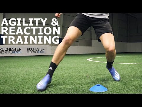 Agility, Reactions and Decision Making Training | Drills To Improve Awareness & Reaction Speed