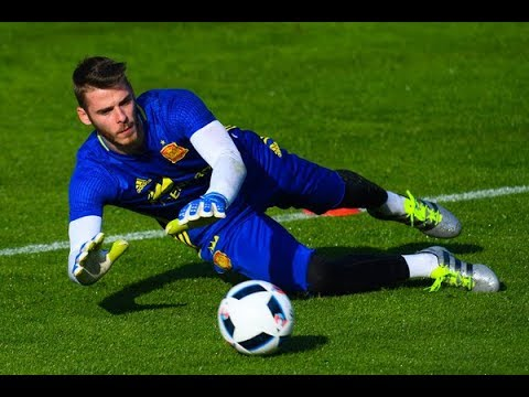 Goalkeeper Reaction Drills and Training: Dynamic Movement, Speed, Strength, Agility and Power
